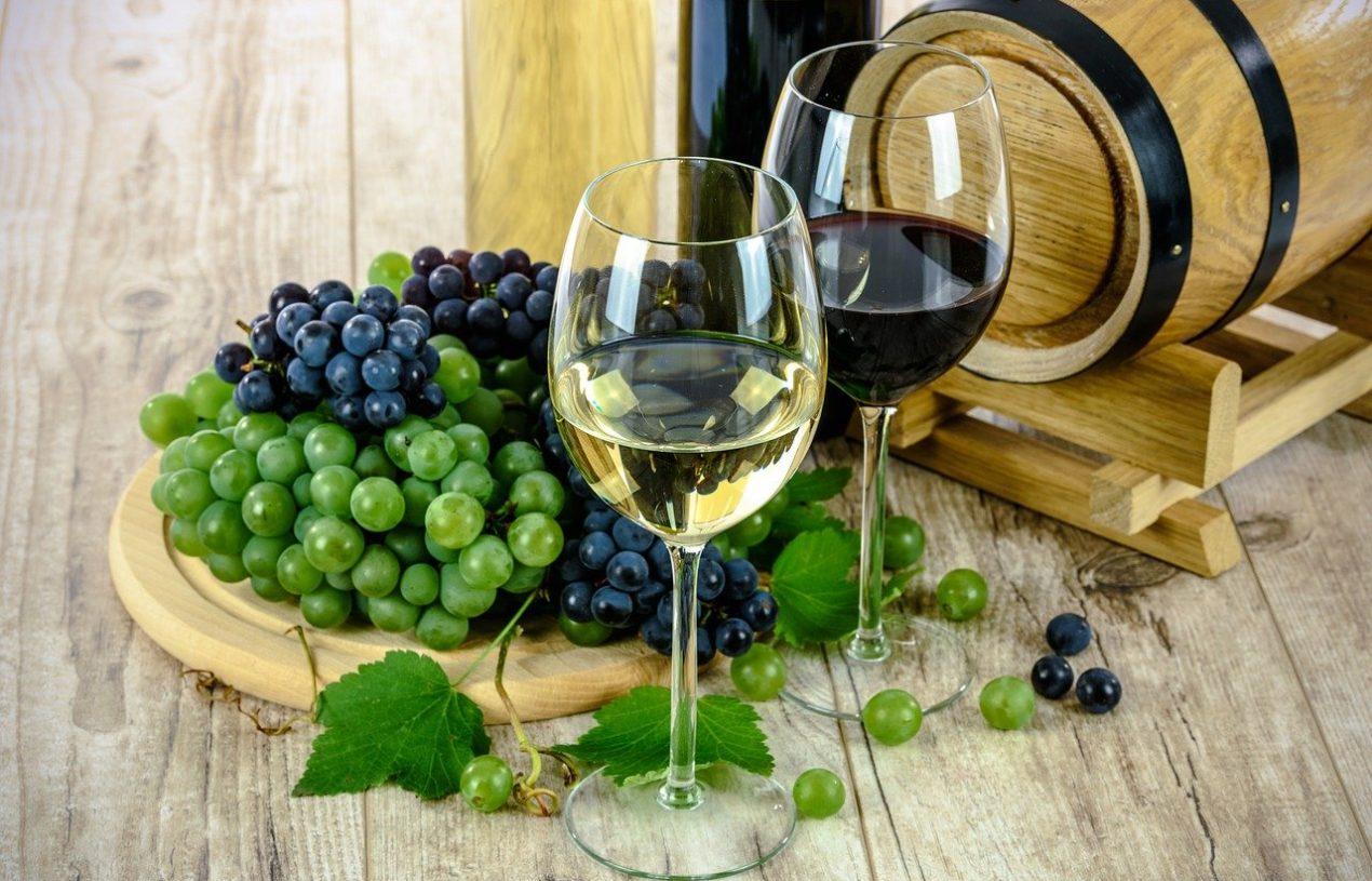 Tout ce qu'il faut savoir sur le vin de Chassagne-Montrachet